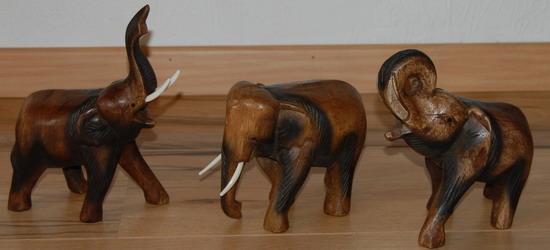 Contact elefant